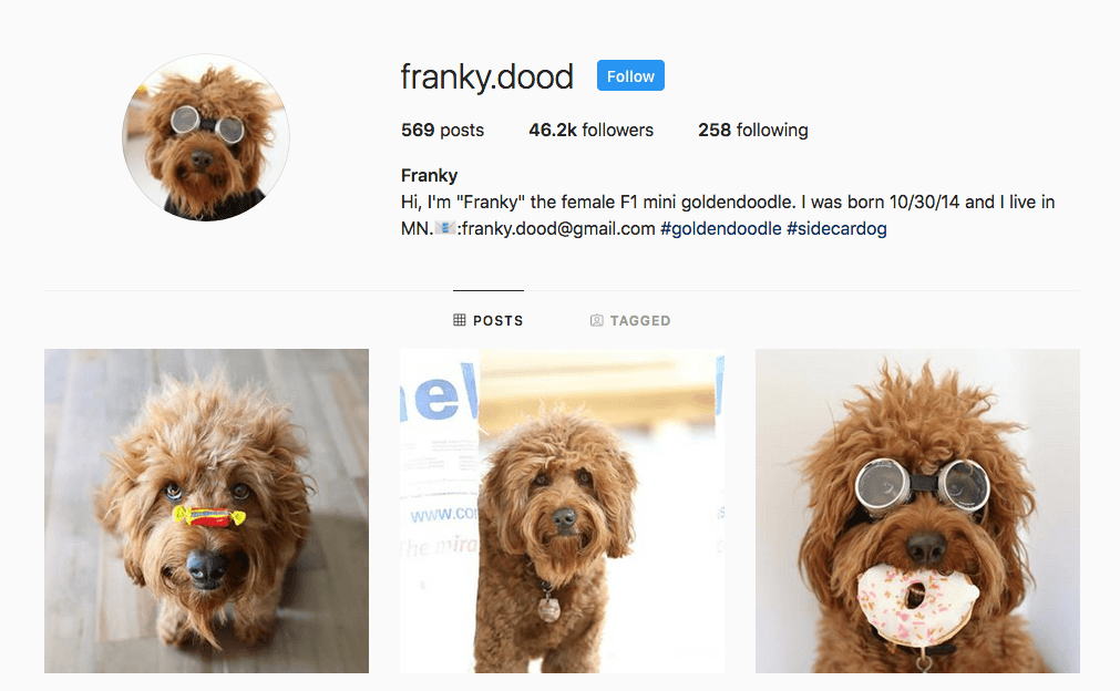 instagram influencer social media franky.dood advertising product promotion
